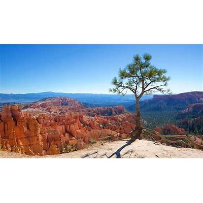 Bryce Canyon National Park Vacation Packages 2017 - Book