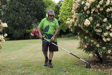 auckland vip home services nz