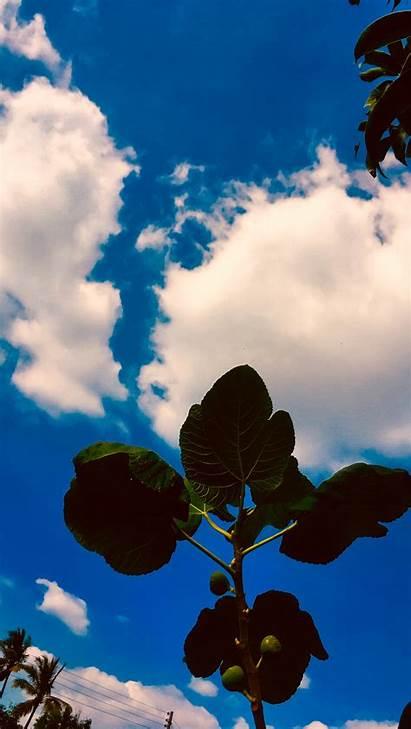 Biru Langit Iphone 4k Cielo Pantalla Azul