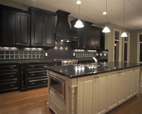 and black kitchen ideas kitchen designs with black cabinets decobizz com