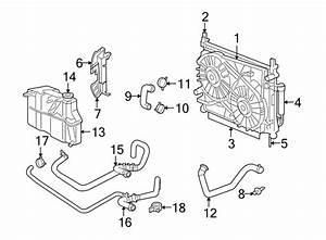 Dodge Charger Radiator Coolant Hose  Liter  Cooling