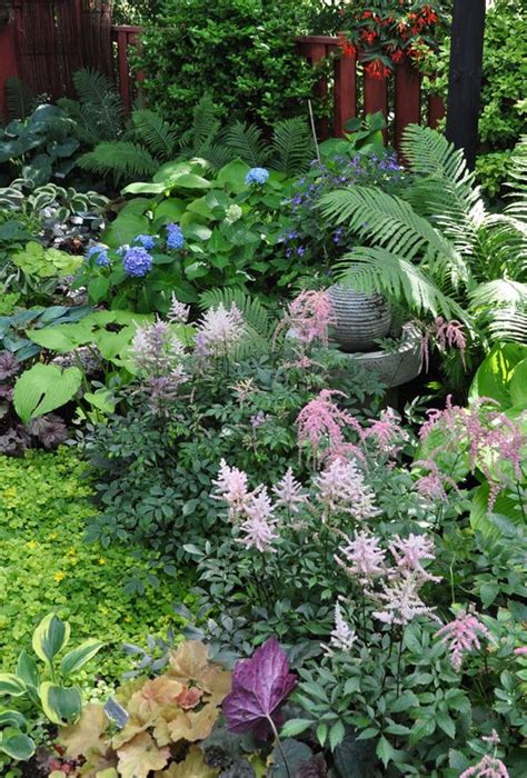 border plants for shade a garden in the shade with astilbe ferns and hosta garden landscaping pinterest gardens