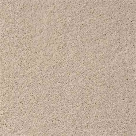 stainmaster tile remover the veiw texture petprotect 174 carpet stainmaster 174
