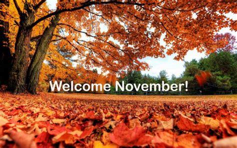 november images  surprise  pixelstalknet