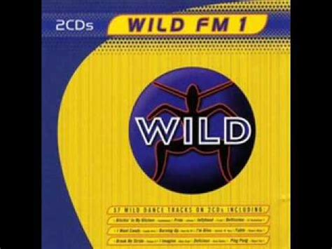 A Wildflower Volume 4 by Fm Vol 1 Cd2 Track 1