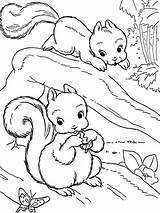 Squirrel Coloring Pages Drawings Colouring Realistic Colornimbus Tree Animals Fruit Drawing Adult Uploaded User sketch template