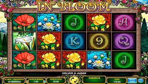 Vaya a google y busque zuko games. lll Jugar In Bloom Tragamonedas Gratis sin Descargar en Linea Juegos de Casino Gratis Máquinas ...