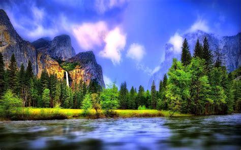 River Forest Hd Desktop Wallpapers 4k Hd