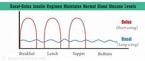Basal Insulin Berechnen : optimal management of basal bolus insulin regimen ~ Themetempest.com Abrechnung