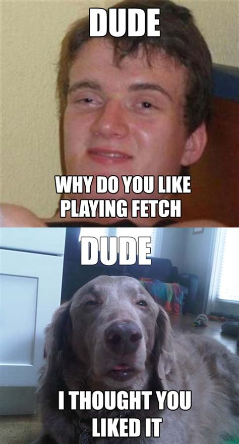 Stoned Meme - really high guy meme plays fetch with really stoned dog