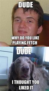 Really High Guy Meme Plays Fetch With Really Stoned Dog
