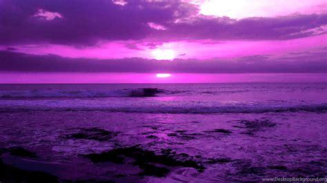 lavender purple aesthetic wallpaper purple