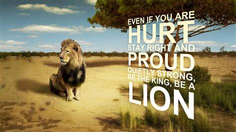 lion hurt quote wallpaper  desktop