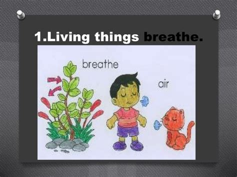 living and nonliving things powerpoint