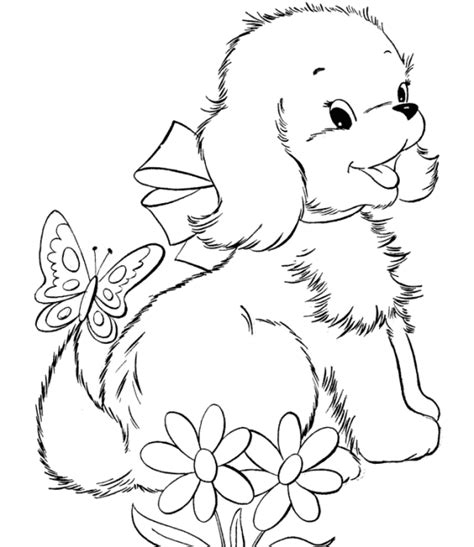 special cat  dog coloring pages gianfredanet