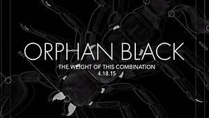 'Orphan Black' Season 3 Posters   Extras   Orphan Black ...