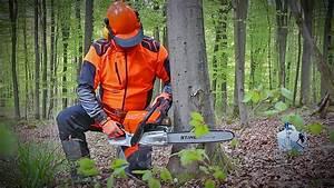 Baum Fällen Technik : b ume f llen sicher und richtig teil 3 f lltechnik f r ~ A.2002-acura-tl-radio.info Haus und Dekorationen