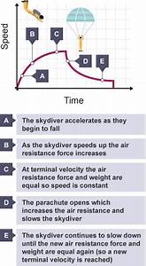 Force Diagram Of A Skydiver