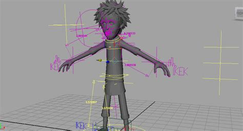 Rigging And Animation