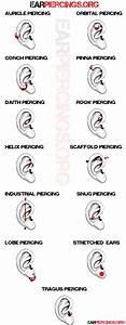 261 Best Dermal Piercing Images