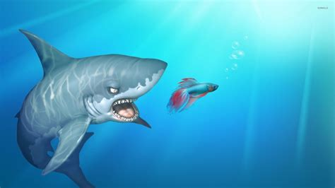 Animated Shark Wallpaper - shark after the fish wallpaper digital wallpapers