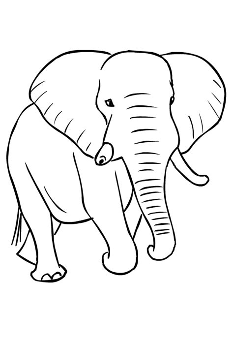 disegno  elefanti da colorare