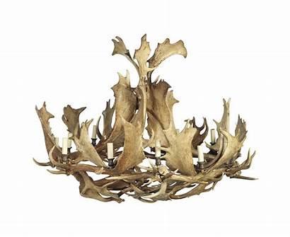 Deer Fallow Antler Guinevere Twelve Chandelier Lot