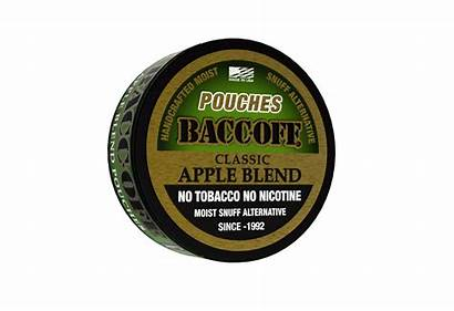 Pouches Natural Straight Wintergreen Apple Mint Tobacco