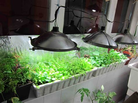 Build Your Own Nursery by Diy Indoor Greenhouse