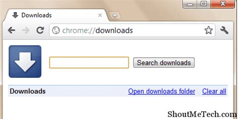 top google chrome download manager addon