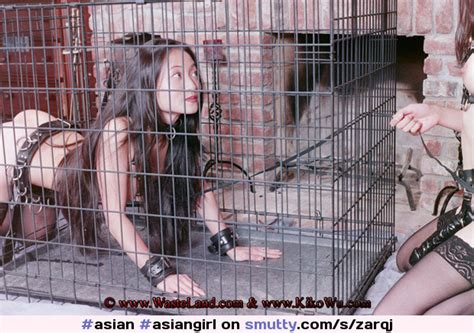 Asian Asiangirl Asianhottie Pet Petgirl Cage Caged Collar Collared Leash Leashed