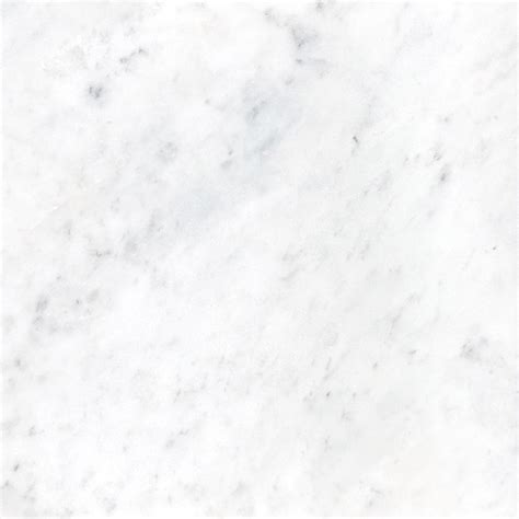 marble bianco bianco cobalt 12x24 honed sale tile stone source