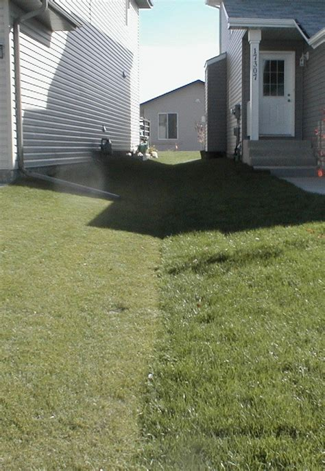 residential yard drainage drainage swales residential city of edmonton