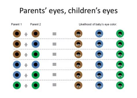 percentage of eye colors color of the baby s babycenter