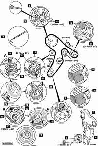 Service Manual  How To Replace Timing Belt On A 2010 Mini
