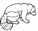 Badger Coloring Honey Ausmalbilder Dachs Bagger Kleurplaat Konabeun Malvorlagen Zum Designlooter Kleurplaten Drawings Ausmalen sketch template