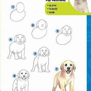 Pics Photos Learn To Draw A Dog Step By Instructions For ...