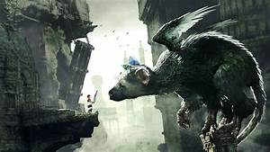 The Last Guardian Walkthrough And Guide Solve All
