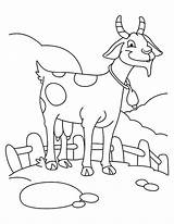 Goats Coloring Coloringpages Getdrawings Azcoloring sketch template