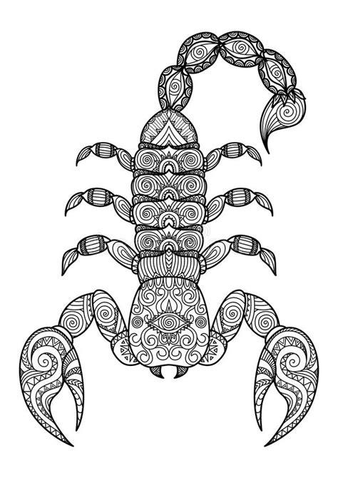 scorpion web design clean lines doodle design of scorpion for t shirt