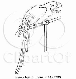 Royalty Free Line Drawing Illustrations By Picsburg Page 2