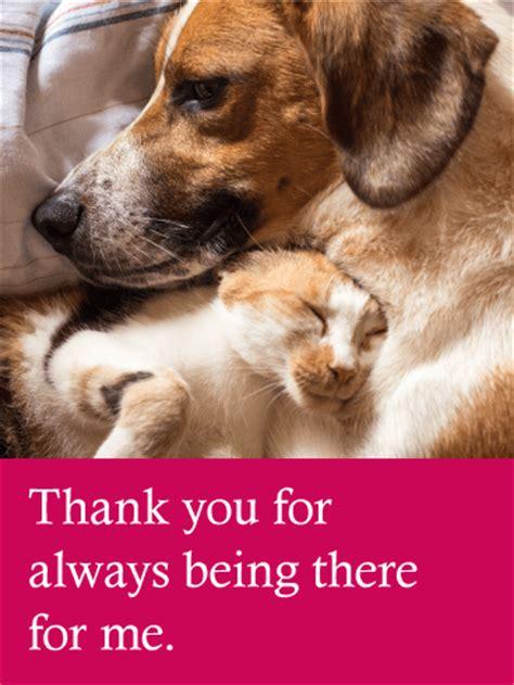 loving dog cat   card birthday greeting