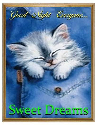 Dreams Night Sweet Everyone Goodnight Sleep Blessings