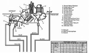 2004 Crown Victoria Vacuum Hose Diagram
