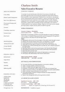 executive cv template resume professional cv executive With executive cv examples