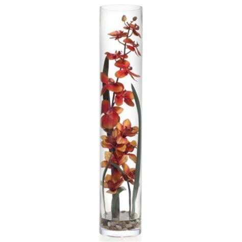 orchid  glass vase orange   gallerie orchid