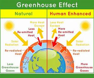 Diagram Of The Greenhouse Effect : global warming ~ A.2002-acura-tl-radio.info Haus und Dekorationen