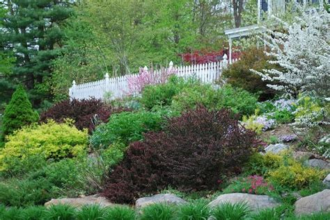 landscape slopes landscaping ideas for slopes slope landscape like the bigger plants hillside landscape