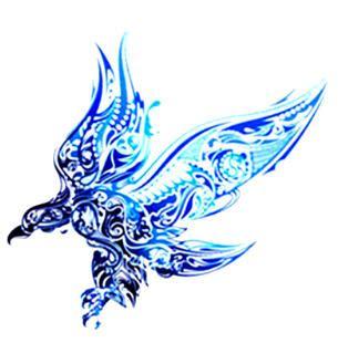 phoenix kolawi