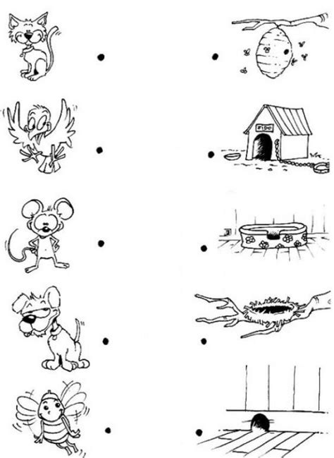 homes of animals worksheets for kids animals and their homes pictures worksheets stuff to buy search pictures and
